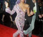 Celebrity Controversial Dresses On The Red Carpet